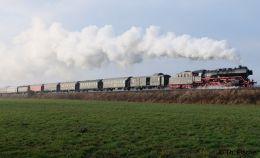 Dampflokomotive 50 3610 mit Museumszug der Berliner Eisenbahnfreunde auf der Heidekrautbahn